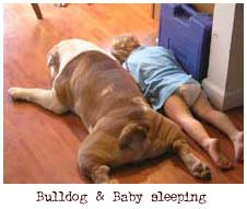 baby and bulldog sleeping on the floor