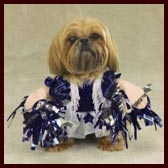 Cheerleader Costume for Dogs
