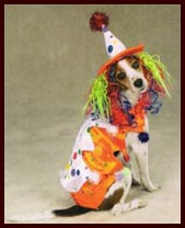 Halloween Clown Dog Costume for for large dogs