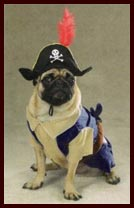 Halloween Pirate Costume for Dogs