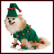 elf holiday dog costume - Large Dog Christmas Outfits