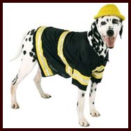 Elvis Dog Halloween Costume Large fits 18  to 24  necks  sc 1 st  English Bulldog & Dog Halloween Costumes for large dogs