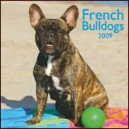 French Bulldogs 2009