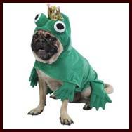 Pug Dog Costumes For Halloween Christmas Puppy Graduation