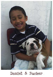 kid and bulldog puppy