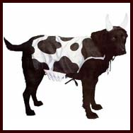 Moo Cow Dog Costume for large dogs. Dog Halloween Costumes & Dog Halloween Costumes for large dogs