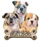 Bulldog Puppies Adult Sweatshirt