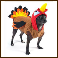 fireman dog costume available in sizes medium small and also large x small x large - Large Dog Christmas Outfits