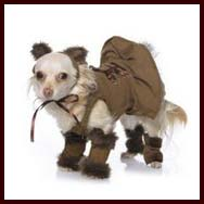 Wizard of Oz  sc 1 th 188 & Halloween costumes for small dogs