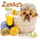 Zelda's Tips from the Tub
