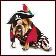 zelda pirate costume